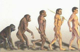 "The process of ""becoming human"" began about six million years ago"