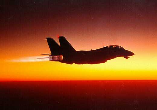 Ultimately we must be our own F-14s