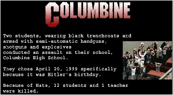 "The youths who conducted the assault on Columbine High School were from ""successful"" families"